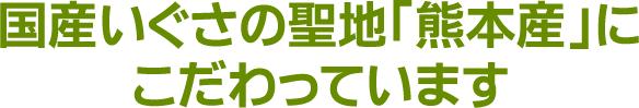 国産いぐさの聖地「熊本産」にこだわっています。